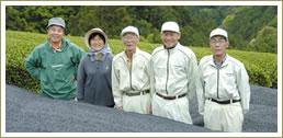 市之瀬茶農業協同組合